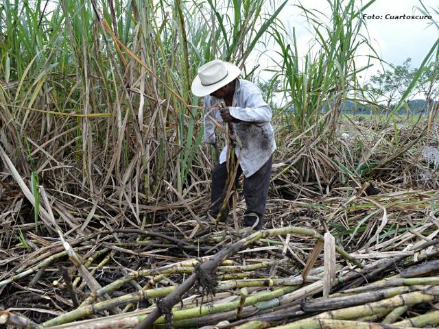 México cancela permisos de exportación de azúcar a EEUU