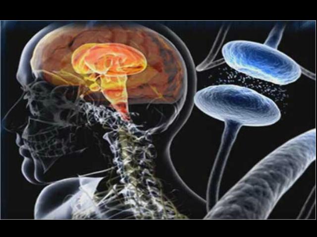 Seguro Social trata efectos del mal de Parkinson con neuroestimulación