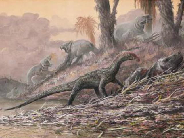 Hallan huevos de dinosaurio con embriones de 70 millones de años