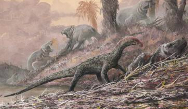 Resultado de imagen para Hallaron el eslabón perdido de dos familias de dinosaurios