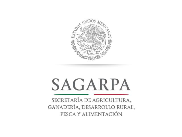 Sindicato independiente denuncia acoso laboral de Sagarpa y sus afiliados
