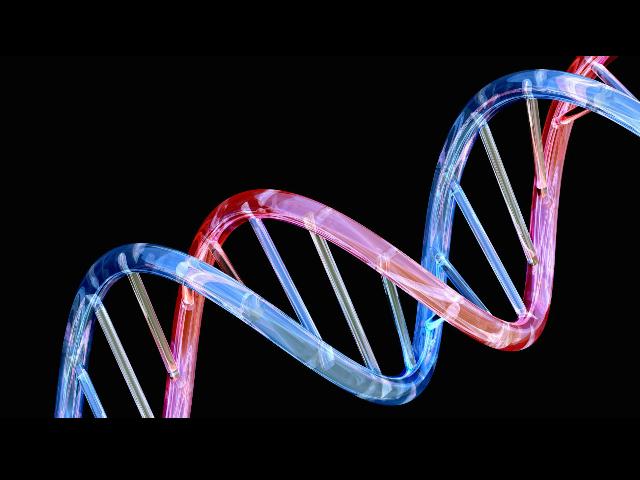 Descubre el superordenador que descifra el genoma humano