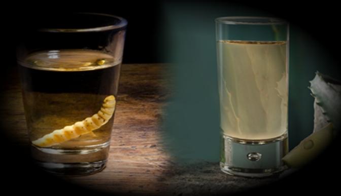 El Mezcal y Tequila son reconocidos con la denominación de origen