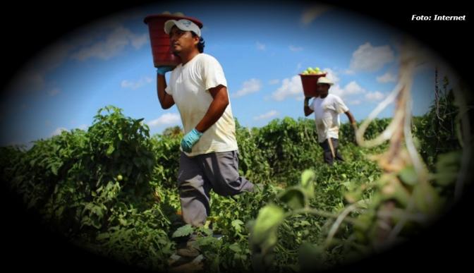 Envejecimiento de campesinos, amenaza para seguridad alimentaria en México | Georgina Saldierna