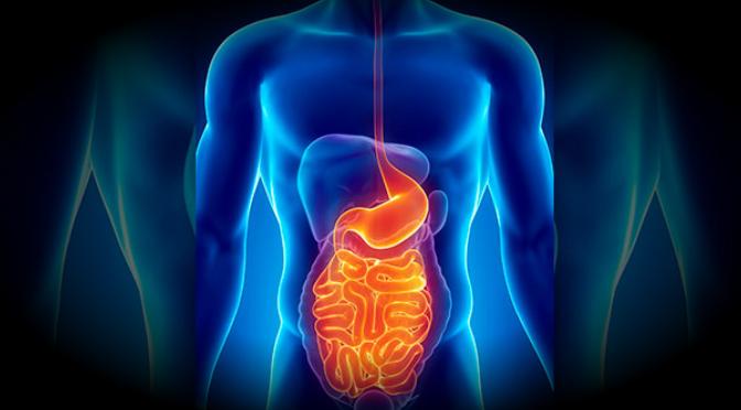 Presentan avances recientes en Gastroenterología