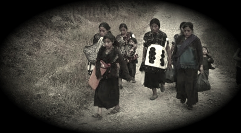 Mueren de hambre y frío seis desplazados de Chalchihuitán, Chiapas