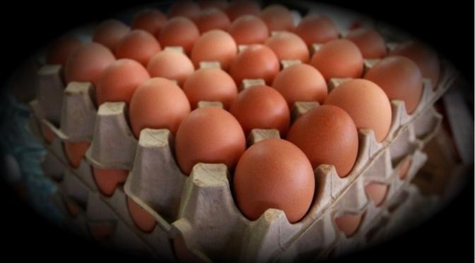 Golpe a los bolsillos de los mexicanos: se registra alza del huevo