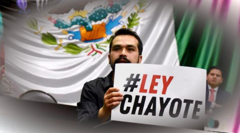 """Artículo 19 y senadora adelantan acciones contra """"Ley Chayote"""", ya en manos de EPN"""